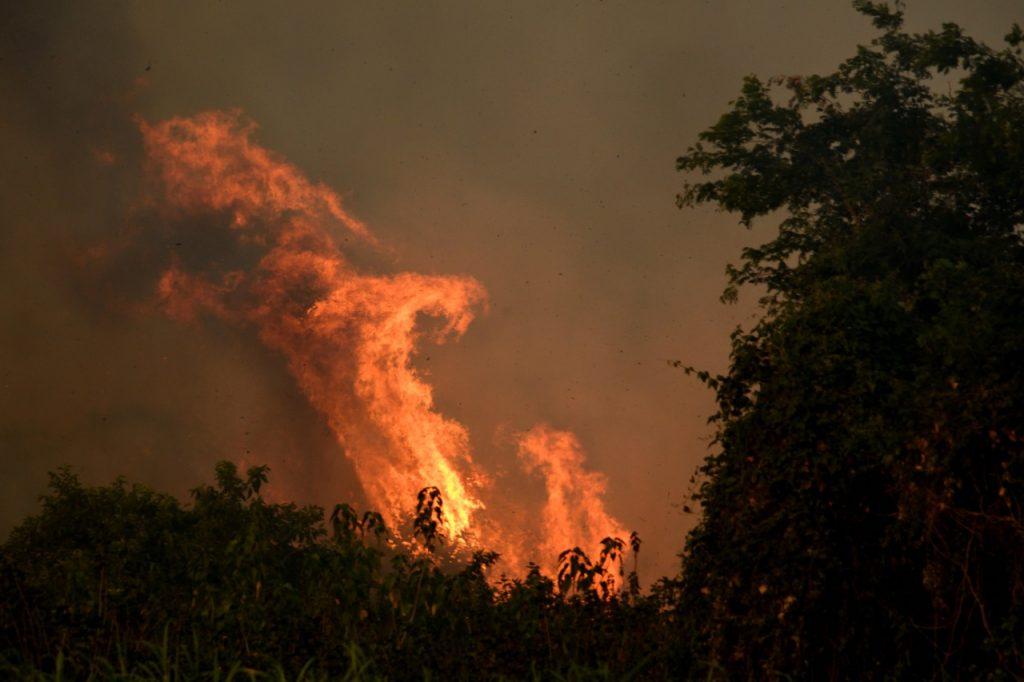 Incêndio atingindo a Baía Vermelha, na Serra do Amolar. Fonte: IHP