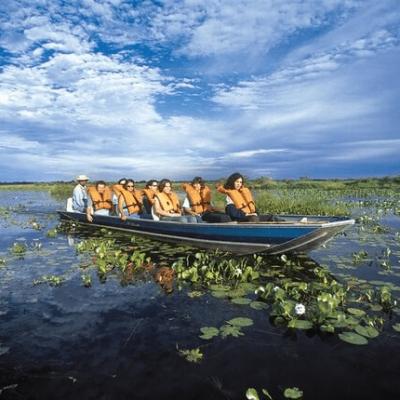 pantanal-patrimonio-natural-da-humanidade-pela-unesco