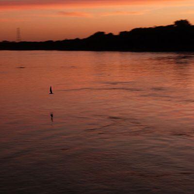 vista-pantanal